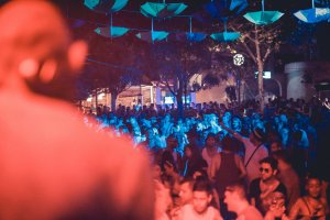 Review: The Zoo Project at Benimussa Park, 22nd August