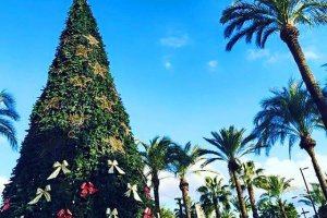 Ibiza Winter Diary - December bliss