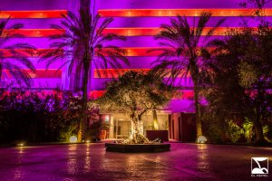 Pacha opens pop-up club Cherry Room over the winter on Ibiza