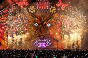 Video: Mysteryland 2014 trailer