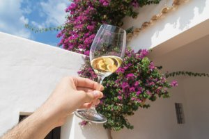 Guided tours and wine tasting at Can Rich