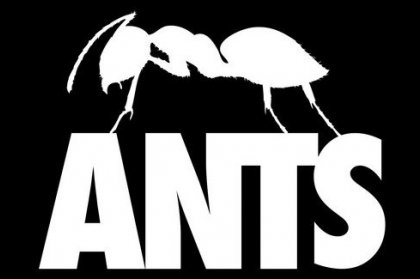 Album of the Week: ANTS The Mix