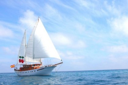 Pacha 67 Sailboat + club tickets on sale