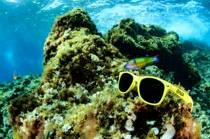 Diving deep with the experts at Scuba Ibiza