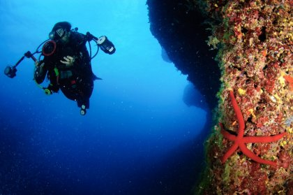 Summer adrenaline shots: scuba diving