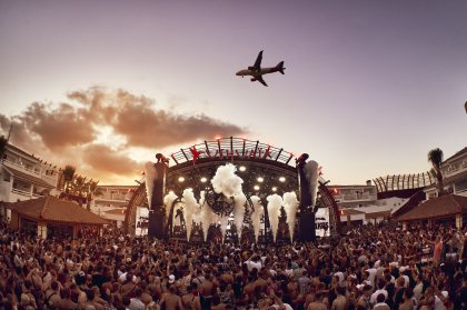 The colony of ANTS returns to Ushuaïa