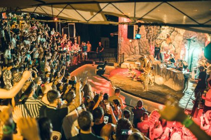 The Zoo Project returns to Ibiza for summer 2019