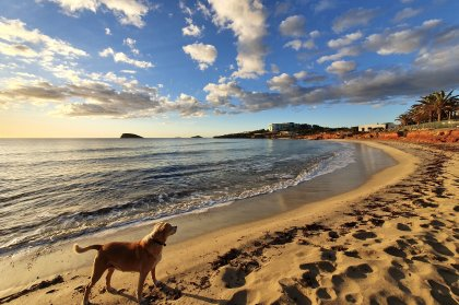 Walking Ibiza take us Around the Island in 10 Walks part 9
