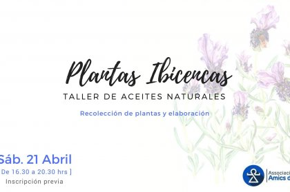 Oil Workshop with Ibizan Plants by Amics de Ibiza