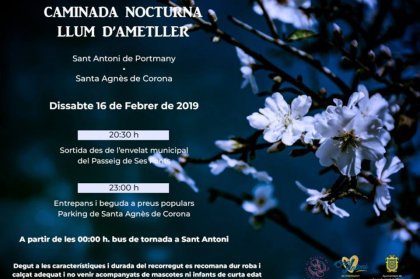 Fiesta de San Antonio - Almond blossom night walk