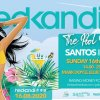 Hedkandi : The Pool Party @Santos Ibiza
