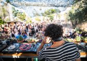 Video: Zoo Evolution Tuesdays at The Zoo Project, Ibiza